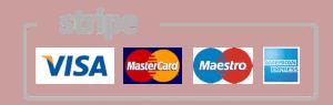 Shuttleairport-payment
